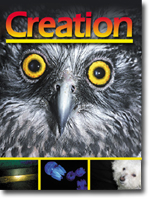Creation Magazine Volume 25 Issue 4 Cover