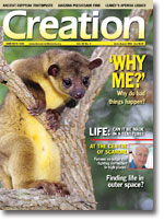 Creation Magazine Volume 26 Issue 3 Cover