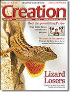 Creation Magazine Volume 30 Issue 1 Cover