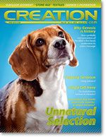 Creation Magazine Volume 32 Issue 3 Cover