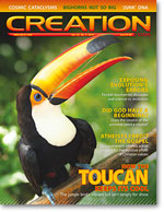 Creation Magazine Volume 32 Issue 4 Cover