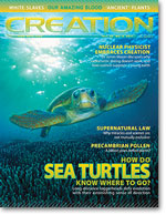 Creation Magazine Volume 33 Issue 3 Cover