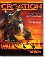 Creation Magazine Volume 33 Issue 4 Cover