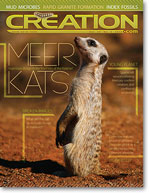 Creation Magazine Volume 34 Issue 3 Cover