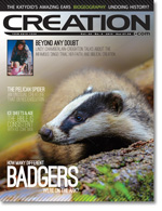 Creation Magazine Volume 35 Issue 4 Cover