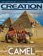 Creation Magazine Volume 36 Issue 3 Cover
