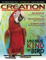 Creation Magazine Volume 37 Issue 3 Cover