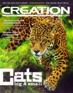 Creation Magazine Volume 37 Issue 4 Cover