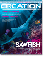 Creation Magazine Volume 38 Issue 3 Cover