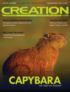 Creation Magazine Volume 39 Issue 2 Cover