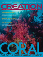 Creation Magazine Volume 39 Issue 3 Cover