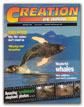 Creation Magazine Volume 19 Issue 1 Cover