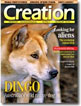 Creation Magazine Volume 27 Issue 2 Cover