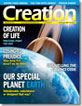Creation  Volume 28Issue 3 Cover