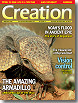Creation Magazine Volume 28 Issue 1 Cover