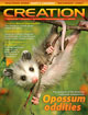 Creation  Volume 31Issue 4 Cover