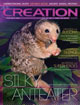 Cover of Creation 35(1)