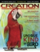 Creation  Volume 37Issue 3 Cover