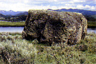 'Erratic' boulder at Yellowstone National Park
