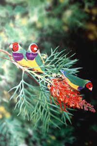 Artist's impresion of three perching Gouldian finches