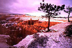 Photo of Bryce Canyon in southern Utah, USA