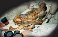 A desiccated mummy