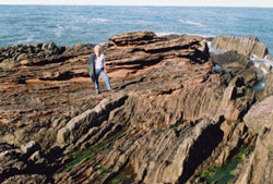 Vertical and horizontal strata meet at Siccar Point