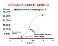 creation_mag/vol28/dino_growth_small.jpg