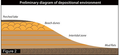 Preliminary diagram of depositional environment