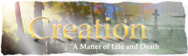 Creation - A Matter of Life and Death