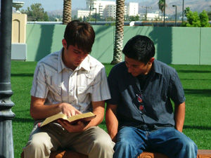 Students studying the bible