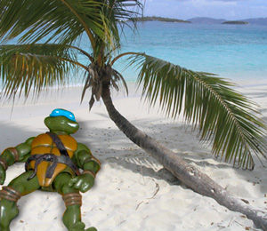 A teenage mutant ninja turtle relaxing under a coconut tree at the beach.
