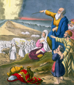 How did Moses organize the Israelites for the Exodus on such short notice?