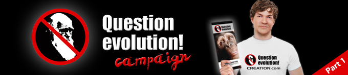 Question evolution campaign