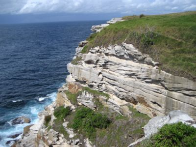 Hawkesbury Sandstone forms steep cliffs along coast near Sydney.