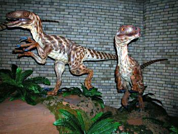Non-feathered models of deinonychus