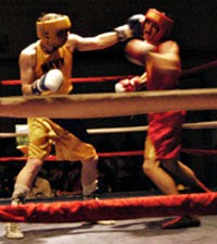 Picture of a boxer giving a jab to the head of another boxer.