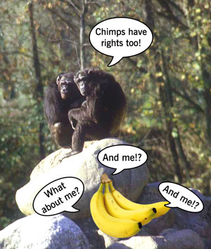 Talking apes and bananas