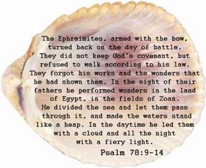 psalms 78:9-14