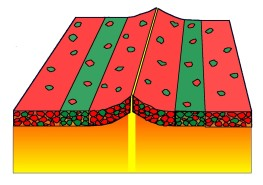 Magnetic reversal pattern mid-ocean ridges
