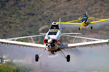 An aeroplane crop-dusting
