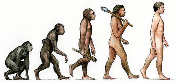 An icon of evolutionism. Apes-to-humans often shows ancestral hominids as dark skinned