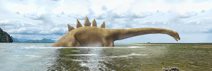 Figure 10: The creature observed at Gasmata Reef held its head and neck (about 3 metres long) just above the water and was described as having a 'saw' in the middle of its back. The visible part of the creature was estimated to be about 8 metres (26 feet) in length—but its total body length was likely considerably greater, given its tail was submerged and out of view.