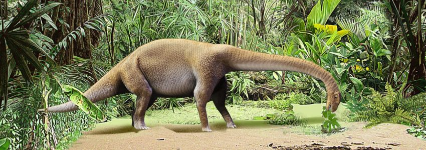 Figure 6: An artist's reconstruction of the three-metre animal that Alice Pasington says she saw while working in the garden about 40 metres away.
