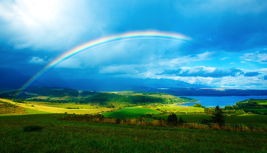 Rainbows, the Flood, and the Covenant