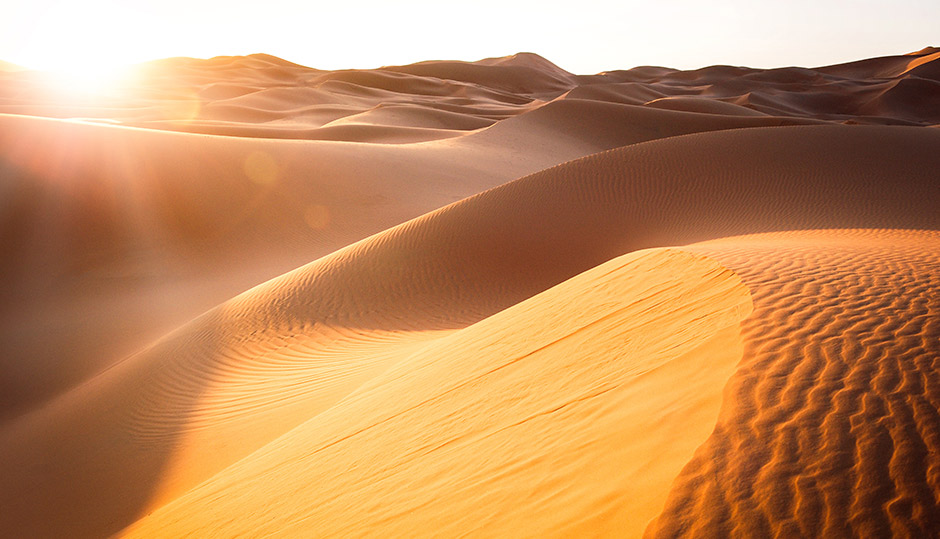 The problem of the wet Sahara