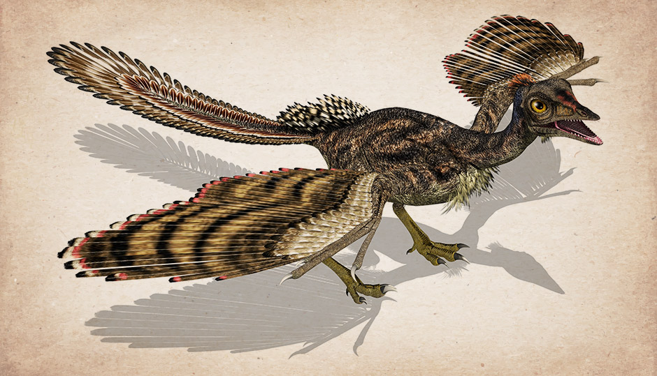 Did feathered dinosaurs exist?