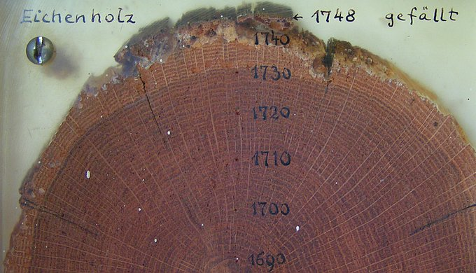 Tree ring dating (dendrochronology)