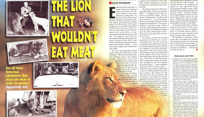 The lion that wouldnt eat meat - creation com