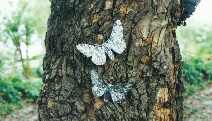 Goodbye, peppered moths